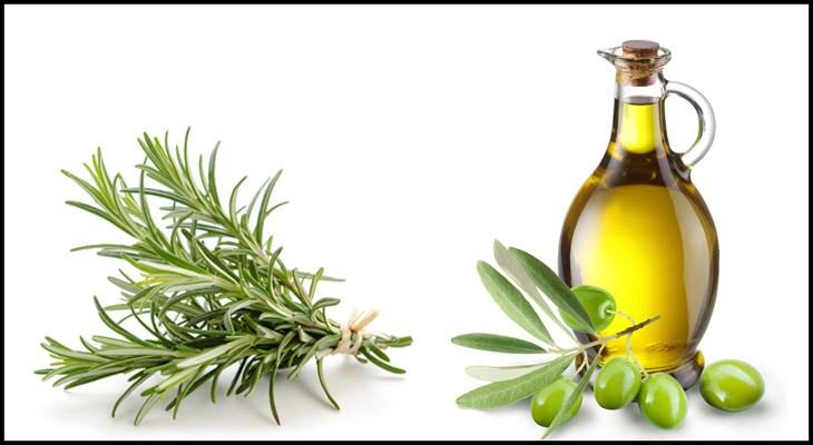 Nguyên liệu món ăn tinh dầu hương thảo organic